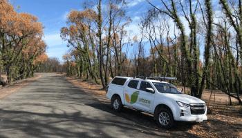Scott Creek/Cherry Gardens Bush Fire Observations